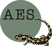 AES National
